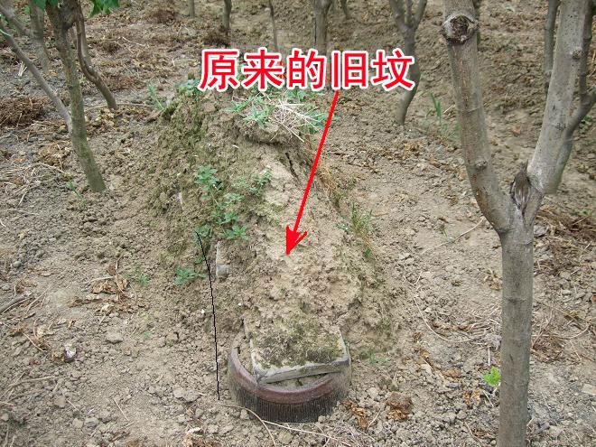 祖坟风水案例图片